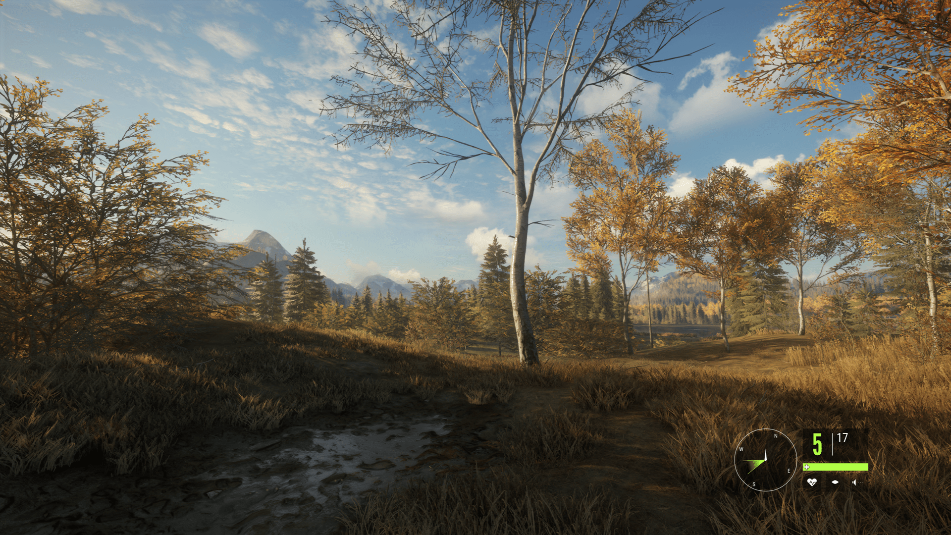 Download TheHunter Call Of The Wild Bloodhound-CODEX in PC [ Torrent ]
